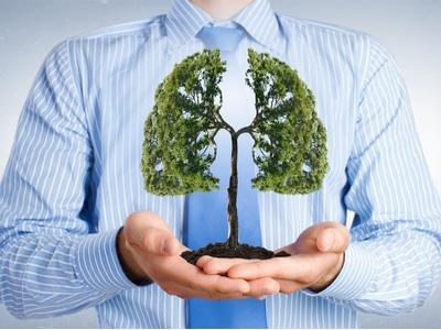 Smulkiųjų kvėpavimo takų pokyčių svarba nustatant astmos fenotipus